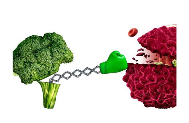 Alimentación inadecuada acerca el cáncer a nosotros