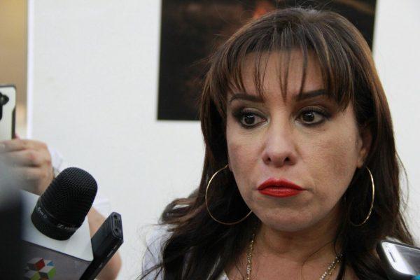 Diputados distribuyen recursos otorgados a grupos legislativos: Mariana García Rojas