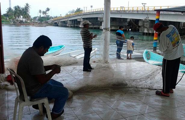 Cae pesca 80% en Tuxpan