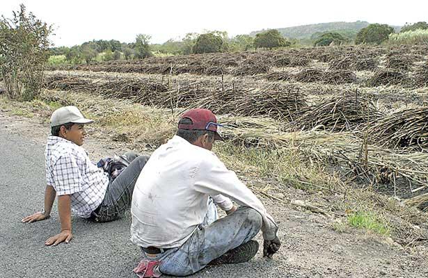 $500 millones no alcanzan para sacar adelante al campo: UGOCP