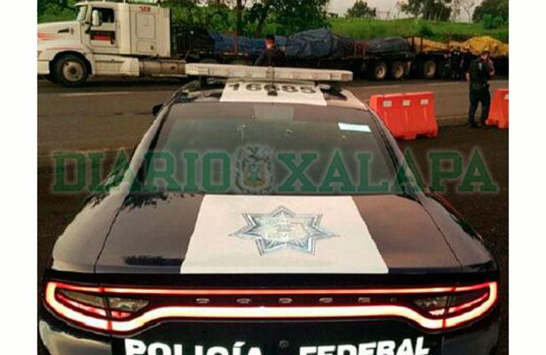 Policía Federal incauta inhibidores de radares para asaltar transportistas