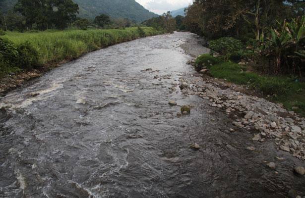 Leyes ambientales son letra muerta, acusa biólogo