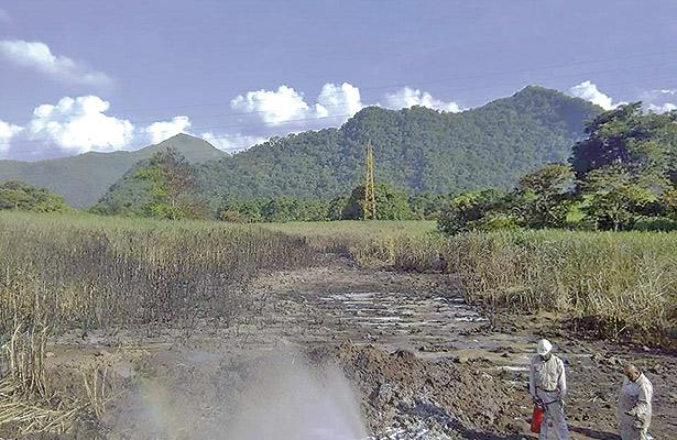 """""""Ordeña"""" de ductos arrasa con flora y fauna; explosiones afectan medio ambiente"""