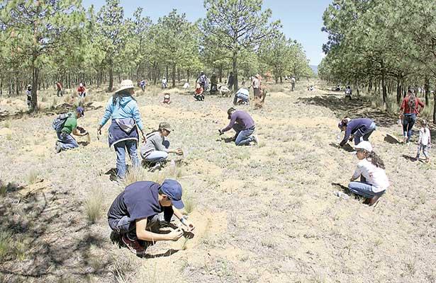 Rescatan paraje desértico; cientos participaron en reforestación