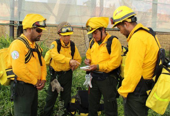 Apoyarán 108 combatientes mexicanos en incendios en Canadá