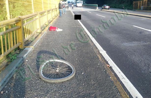 Ciclista pierde la vida tras ser arrollado; tragedia en la autopista