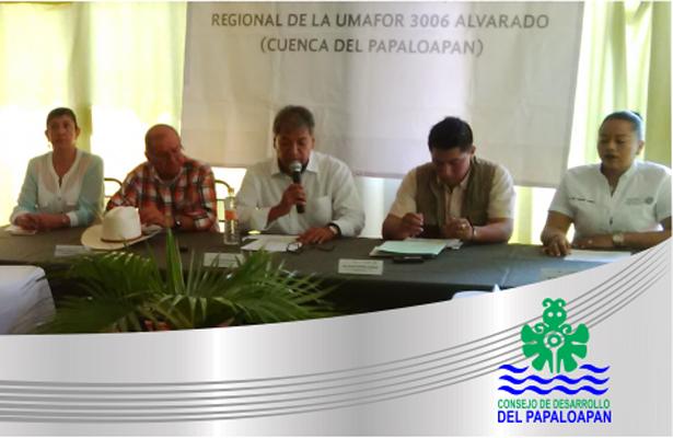 Extingue el gobernador al Consejo de Desarrollo del Papaloapan