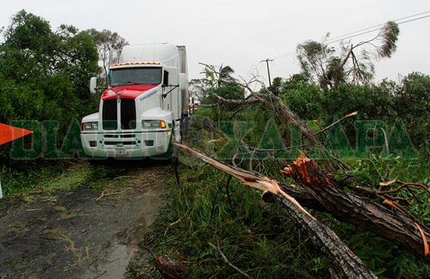 'Franklin' llegaría a Veracruz como huracán categoría 1; se mantiene vigilancia: Segob