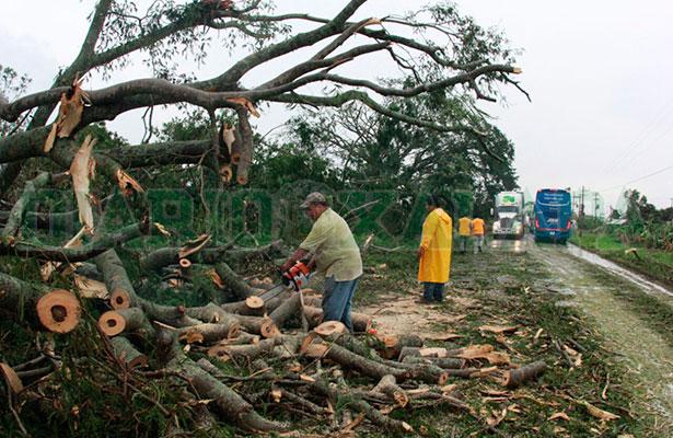Tormenta tropical Franklin originará lluvias en el centro del país