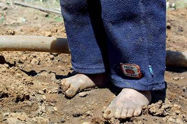 En Veracruz 2 de cada 10 menores de edad viven en pobreza extrema: ODISEA A.C