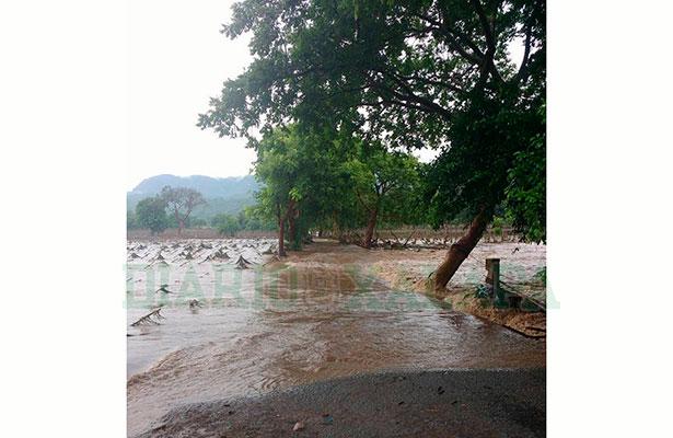 Huracán deja daños en unas 200 hectáreas de la comunidad de Otates