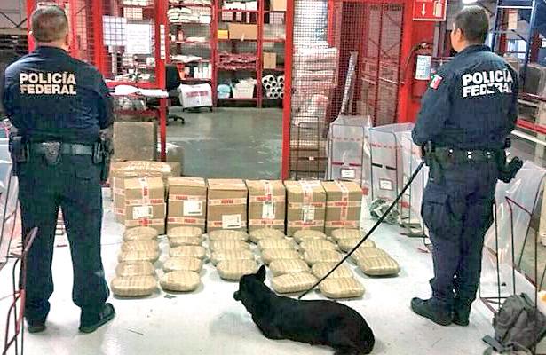 Marihuana a la puerta de la casa, encuentran 34 kilos de marihuana en paquetería