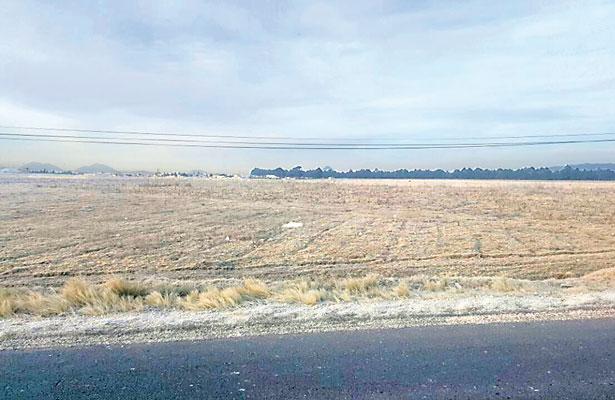 Muere ganado de frío en zona de Perote; también afecta a aves de corral
