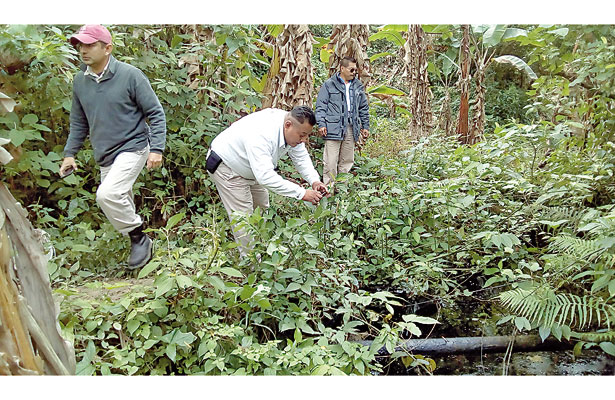 Primer derrame del año: fuga de hidrocarburo contaminó arroyo