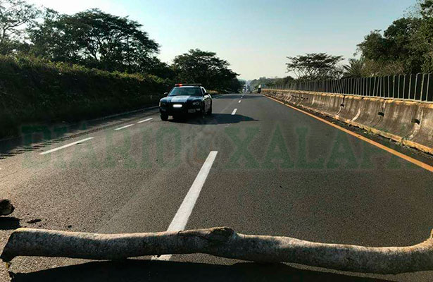 Capturan a asaltante sobre la autopista La Tinaja-Cosoleacaque