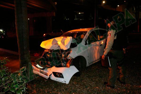 Destrozó su auto contra una palmera frente a plaza Américas