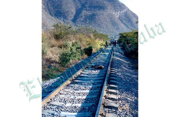 Encuentran a hombre sin vida sobre las vías del ferrocarril