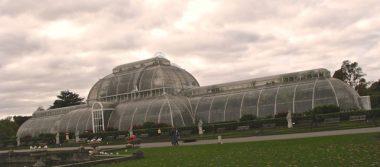 La crisis ambiental y los jardines botánicos