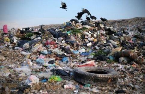 Todos somos partícipes en el deterioro de nuestro planeta.