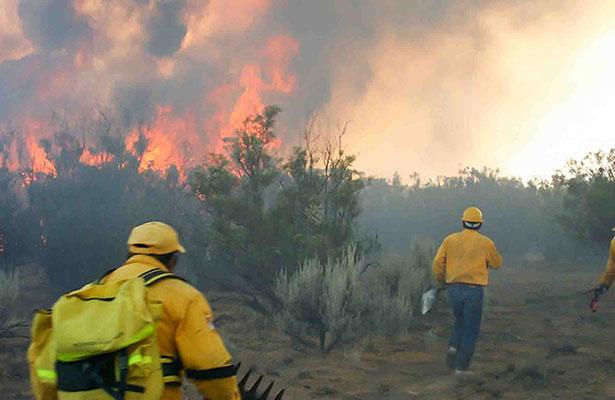 Aguascalientes, con la peor  temporada de incendios forestales