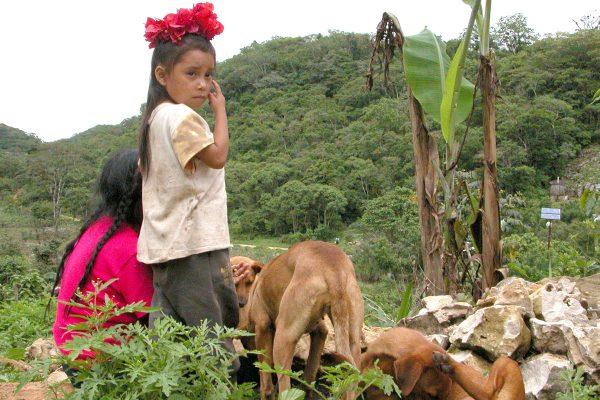 En Chiapas, 40% de municipios más pobres