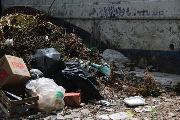 Variedad agresiva de dengue en Chiapas