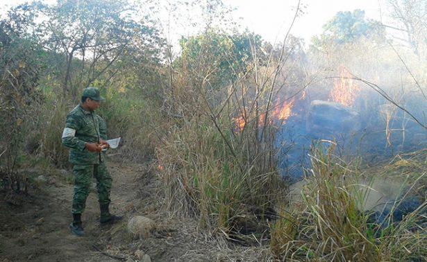 Atiende el Ejército incendioen Parque El Veladero, Guerrero