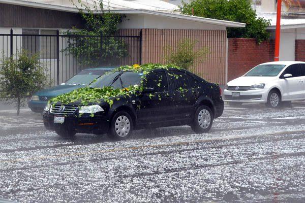 Atiborradas aseguradoras, acuden a reportar daños por granizo