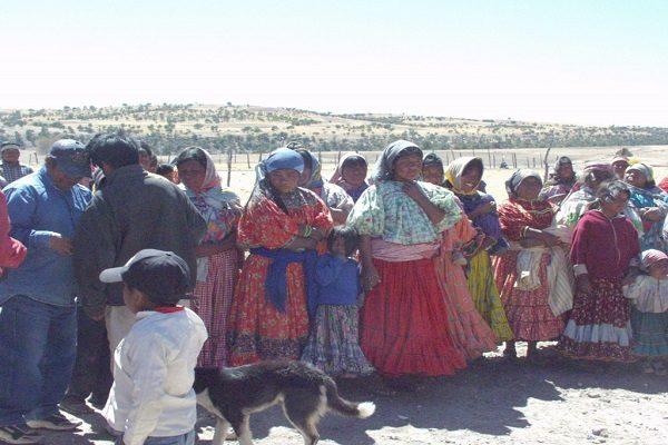 Carecen de alimentos indígenas de Sisoguichi