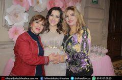 Karla González presidió festejo prenatal