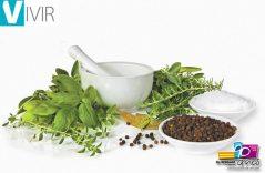 Usos y beneficios de la herbolaria