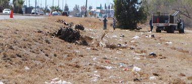 Levantan basura de la carretera Panamericana
