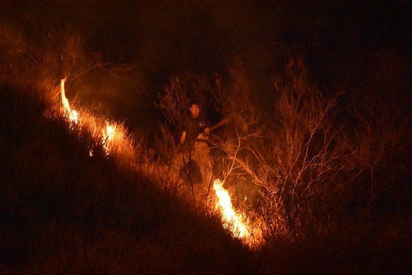 Provocan incendio en el Cerro Coronel; bomberos sofocaron las llamas