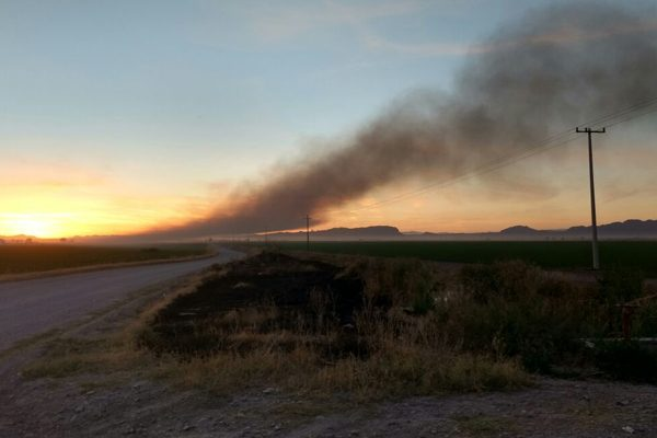 Incendio por tuberías de riego y basura, no en ducto de Pemex