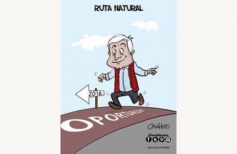 Cartón de Osvaldo