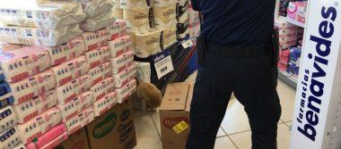 Rescatan Bomberos a gato en el interior de farmacia