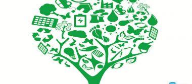 ¿Qué es ser eco-friendly?