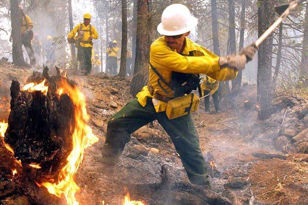 Consumen incendios 43 mil 273 hectáreas en lo que va del año