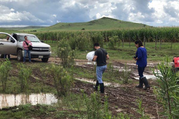Muere bebé al ser arrastrado por la corriente en Cuauhtémoc