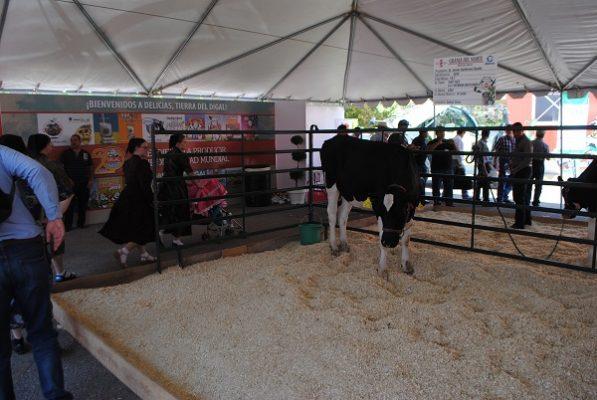 Trabajan mexicanos 107 minutos para poder comprar un litro de leche
