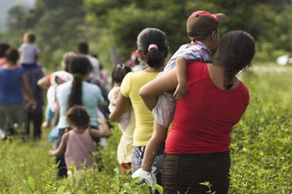 Construcción, salud y educación, puestos de trabajo que ocupan migrantes