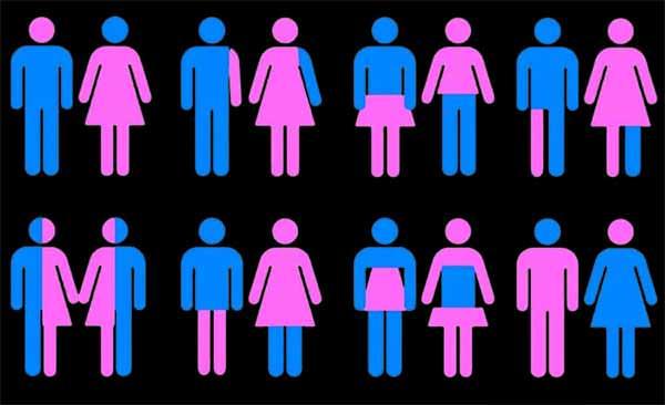 """""""Multinacionales, financiadores de la ideología de género"""": investigadores argentinos"""