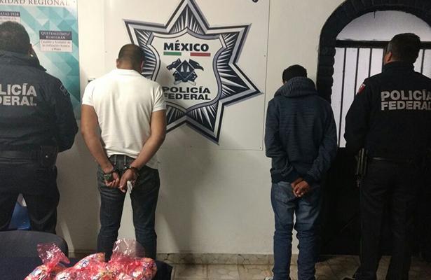 Enraizado el narco en la sierra de Chihuahua, Sonora, Durango y Tamaulipas