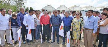 Avanza rescate de agroindustria: ANJ