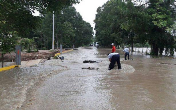 Se desborda río Teapa; afecta cultivos y carretera Villahermosa