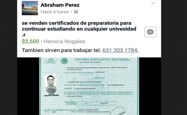 Venden en Nogales certificados de preparatoria