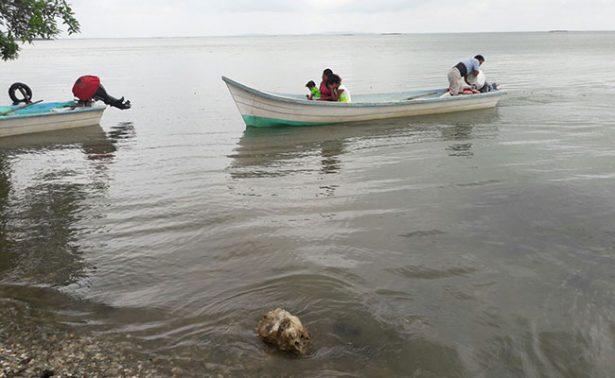 Urge en Tamaulipas y Veracruz desazolvar sistema lagunario