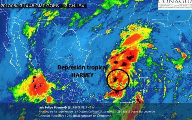 Harvey retoma fuerza como depresión tropical en el Golfo de México