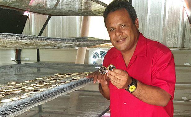 Académico chiapaneco desarrolla deshidratador solar de limón