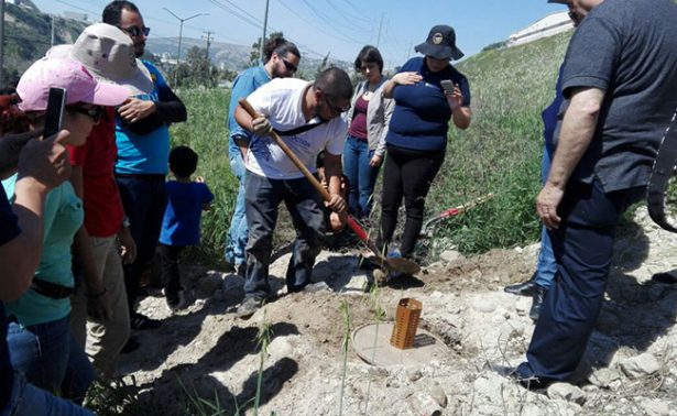 Reforestan taludes de Tijuana de forma innovadora